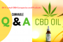20 Trusted CBD Companies and Products