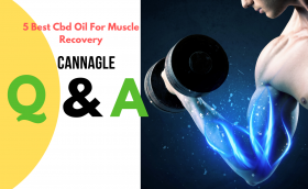 5 Best Cbd Oil For Muscle Recovery