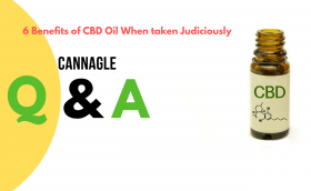 6 Benefits of CBD Oil When taken Judiciously