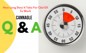 How Long Does It Take For Cbd Oil To Work