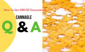 How To Use CBD Oil Concentrate
