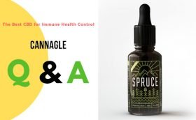 The Best CBD for Immune Health Control